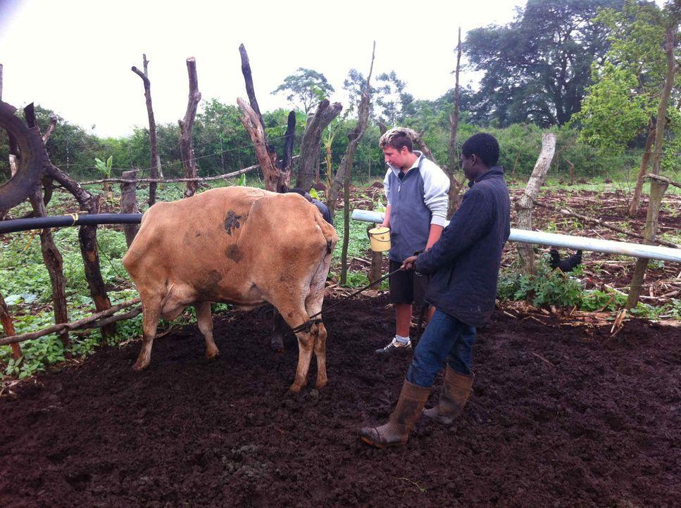Das Leben ist hart und entbehrungsreich in Swasiland. Und genau hier werden die zwei respektlosen Wohlstandskids Chiara und Christian (l.) Fleiß und... - Bildquelle: SAT.1