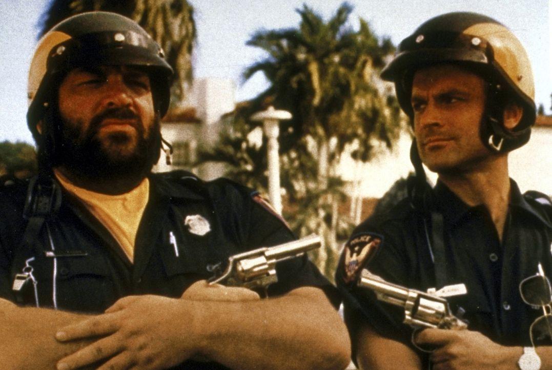 Die beiden Pseudo-Polizisten Matt Kirby (Terence Hill, r.) und Willbur Walsh (Bud Spencer, l.) kommen einem Drogen-Ring auf die Spur ... - Bildquelle: Warner Bros. GmbH