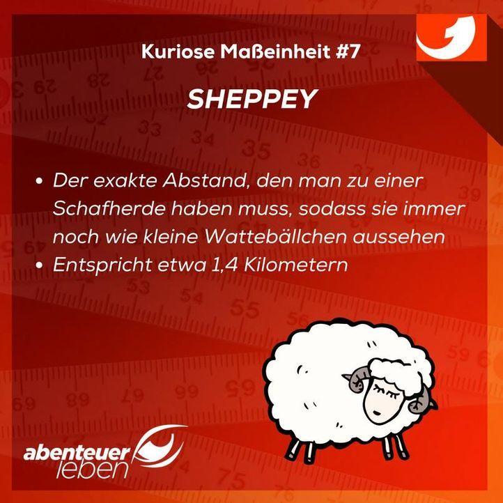 Sheppey - Bildquelle: kabel eins