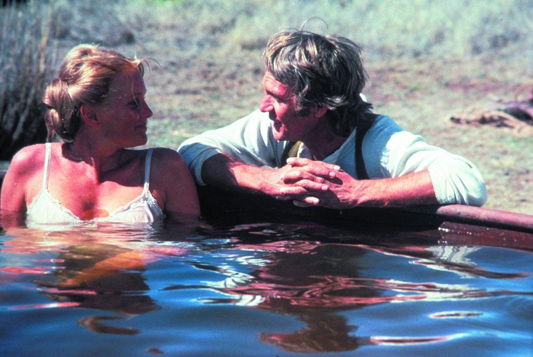 Haben eine leidenschaftliche Affäre: die liebenswerte Lehrerin Glendolene (Linda Evans, l.) und der hartgesottene Kopfgeldjäger Tom Horn (Steve Mc...