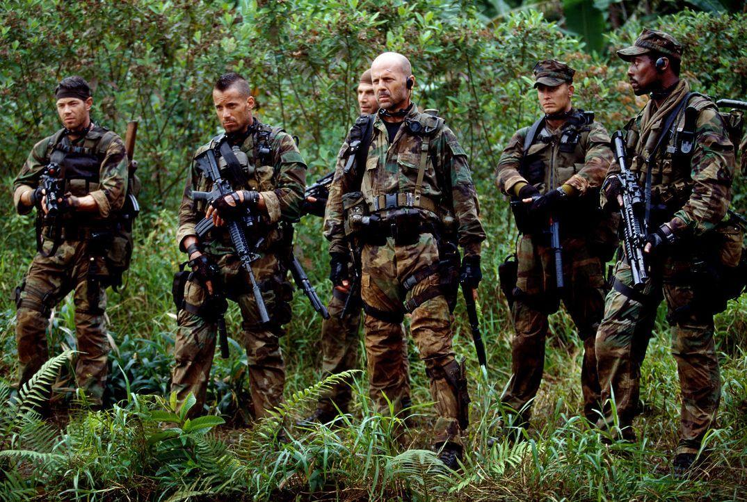 Sie sollen eine Italienerin, die durch Heirat US-Staatsbürgerin wurde, aus einem Dschungellazarett in Nigeria evakuieren: (v.l.n.r.) Danny (Paul Fr... - Bildquelle: 2004 Sony Pictures Television International. All Rights Reserved.