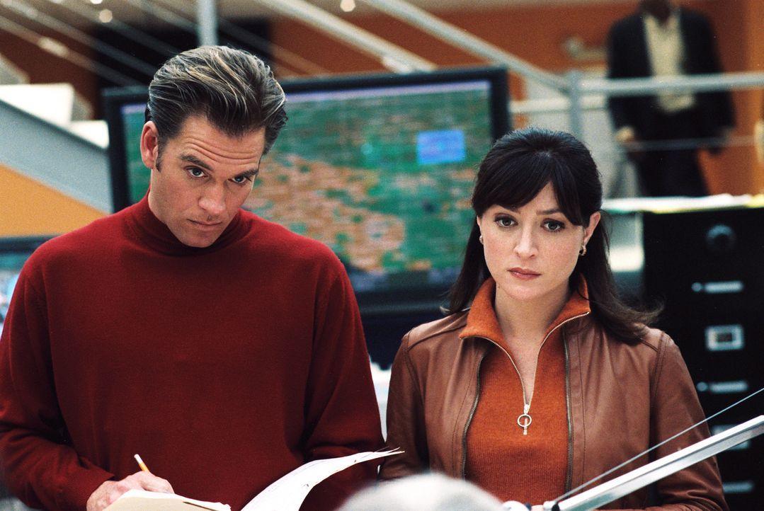 Wieder einmal müssen Kate (Sasha Alexander, l.) und Tony (Michael Weatherly, r.) einen kniffligen Fall lösen ... - Bildquelle: CBS Television