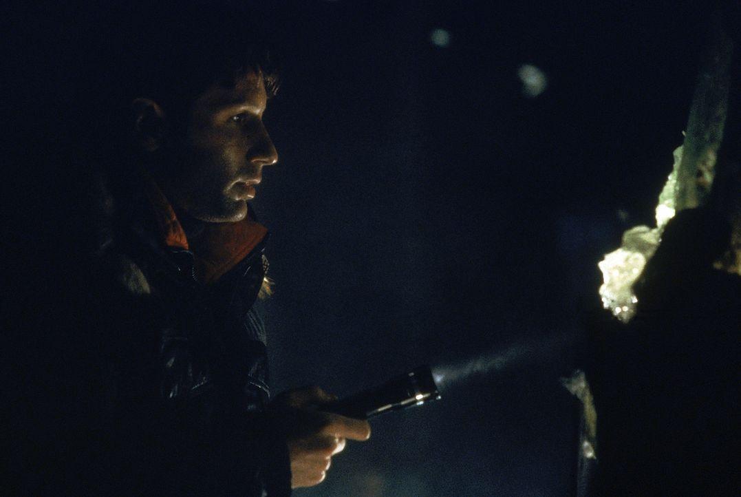 Special Agent Fox Mulder (David Duchovny) macht eine seltsame Entdeckung. - Bildquelle: Twentieth Century-Fox Film Corporation
