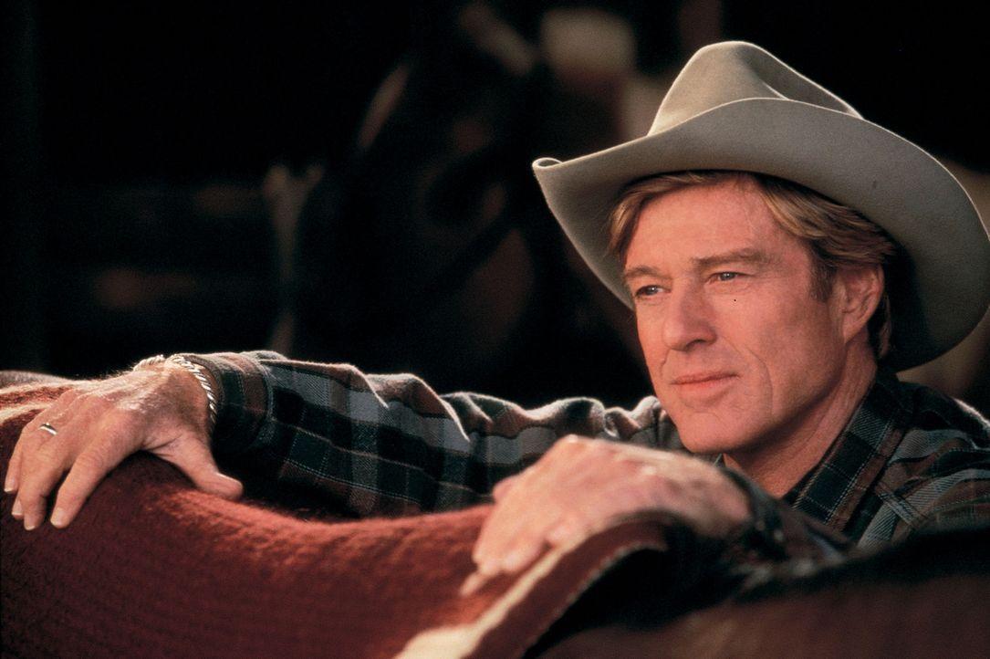 Hat die außergewöhnliche Gabe, sich in die Psyche von Pferden hineinzuversetzen: Tom Booker (Robert Redford) ... - Bildquelle: Elliott Marks Touchstone Pictures