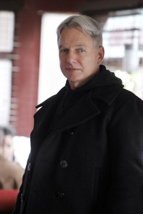 Sieht sich mit all den Entscheidungen, die er im Laufe seines Lebens getroffen hat, konfrontiert: Gibbs (Mark Harmon) ... - Bildquelle: CBS Television