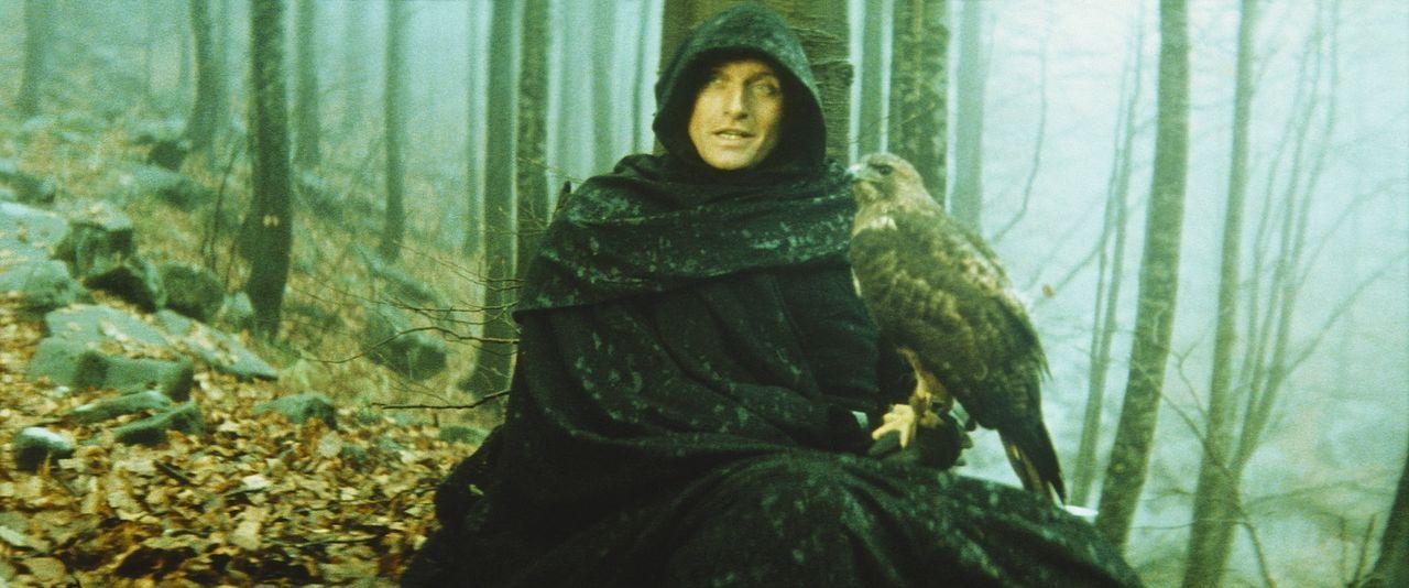 Der geheimnisvolle Ritter Navarre (Rutger Hauer) und sein Falke sind unzertrennlich, denn sie teilen ein grausames Schicksal ... - Bildquelle: 20TH CENTURY FOX FILM CORP. INC
