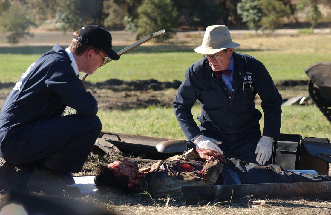 Bei der Untersuchung der Leichen, müssen Jimmy (Brian Dietzen, l.) und Ducky (David McCallum, r.) feststellen, dass der Tote Victor Gera (Michael Gu... - Bildquelle: CBS Television