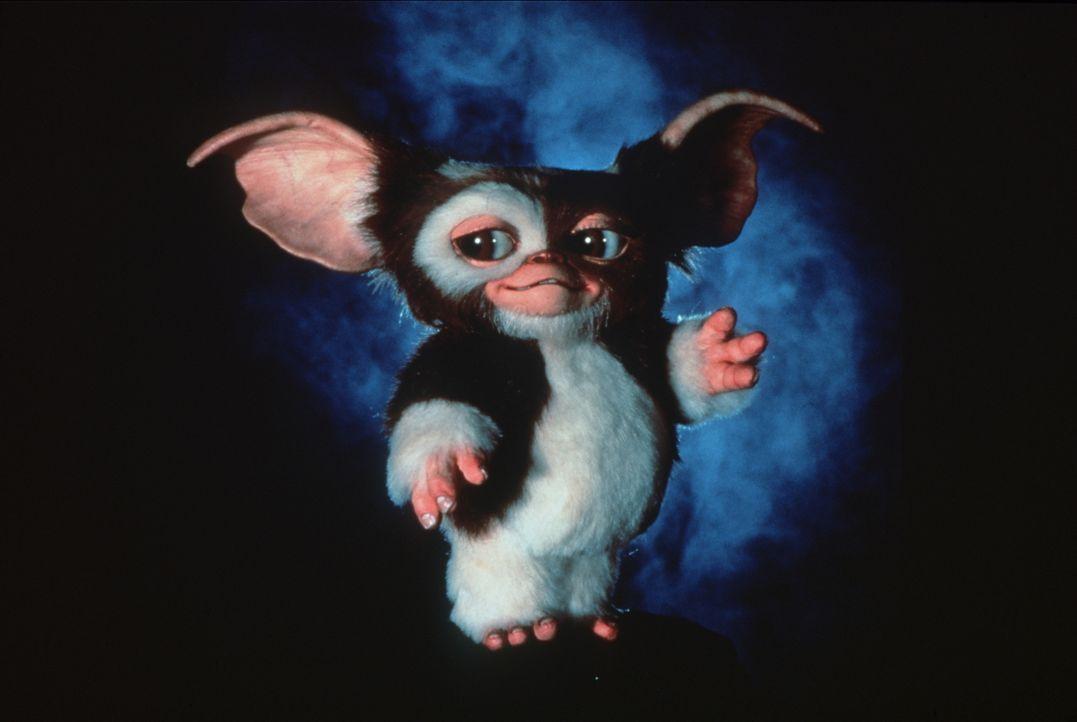 Nach sechs Jahren kehrt der niedliche, kleine Gizmo zurück, doch mit ihm kommen auch die hässlichen, bösen Gremlins wieder ... - Bildquelle: Warner Bros.