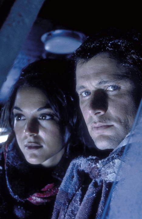 Gemeinsam nehmen Robert (Grant Show, r.) und seine Freundin Julie (Audie England, l.) den Kampf gegen die eisige Hölle auf ... - Bildquelle: Trimark Pictures