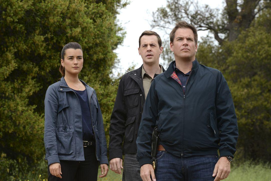 Versuchen, einen neuen Fall aufzuklären: Ziva (Cote de Pablo, l.), McGee (Sean Murray, M.) und DiNozzo (Michael Weatherly, r.) ... - Bildquelle: CBS Television