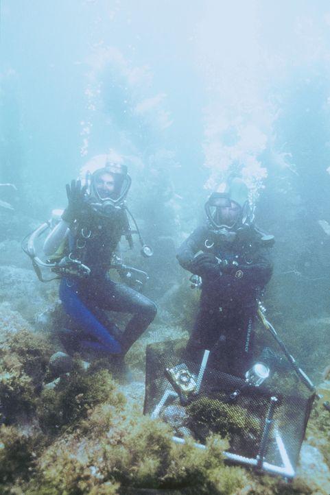 Der Ozeanologe John Alden (Parker Stevenson, r.) und seine Kollegin Alyssa Meade (Mehgan Heaney-Grier, l.) stoßen bei ihren Unterwasserforschungen... - Bildquelle: PARAMOUNT PICTURES
