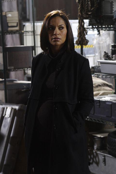 Beschwert sich bei General Mansfield, dass sie die Aufgaben des Sheriffs von Eureka nicht einem Projekt anvertrauen können: Allison Blake (Salli Ric... - Bildquelle: Universal Television