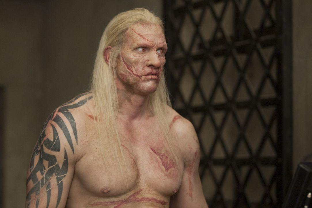 """Theokoles (Reuben de Jong), der """"Schatten des Todes"""", ist ein sagenumwobener Gladiator, der hunderte Männer bereits erschlagen hat. Seine Gegner in... - Bildquelle: 2010 Starz Entertainment, LLC"""