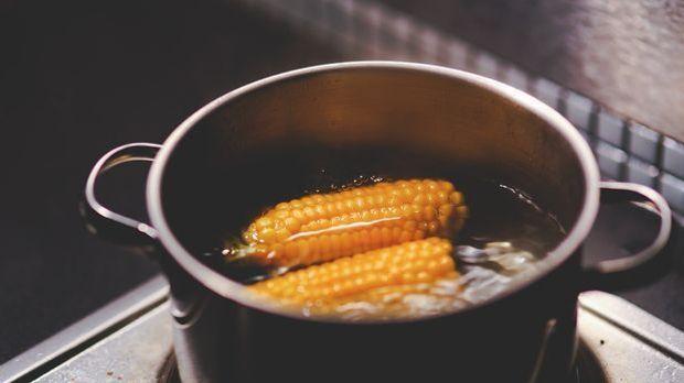 Maiskolben grillen 1