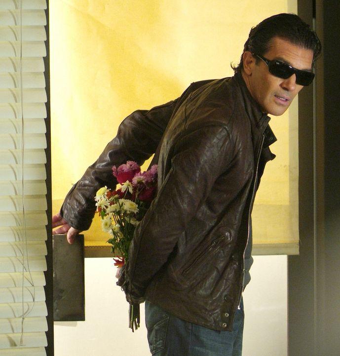 Als Martin (Antonio Banderas) die Bekanntschaft von Ripleys bezaubernder Patentochter Alexandra macht, ist er bereit, Ripley bei einem neuen Coup be... - Bildquelle: Nu Image