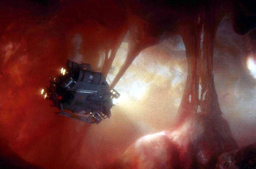 Ein Mann sieht rot: In miniaturisierter Form unterwegs im Körper eines anderen: Tuck (Dennis Quaid) ... - Bildquelle: Warner Bros.