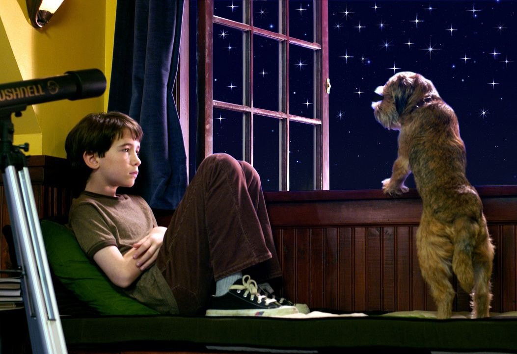 Nach einem intergalaktischen Kurzschluss versteht Owen (Liam Aiken) plötzlich die Hunde-Sprache. Er erfährt, dass Hubble (r.) vom Hunde-Planeten S... - Bildquelle: Metro-Goldwyn-Mayer Studios Inc. All Rights Reserved.