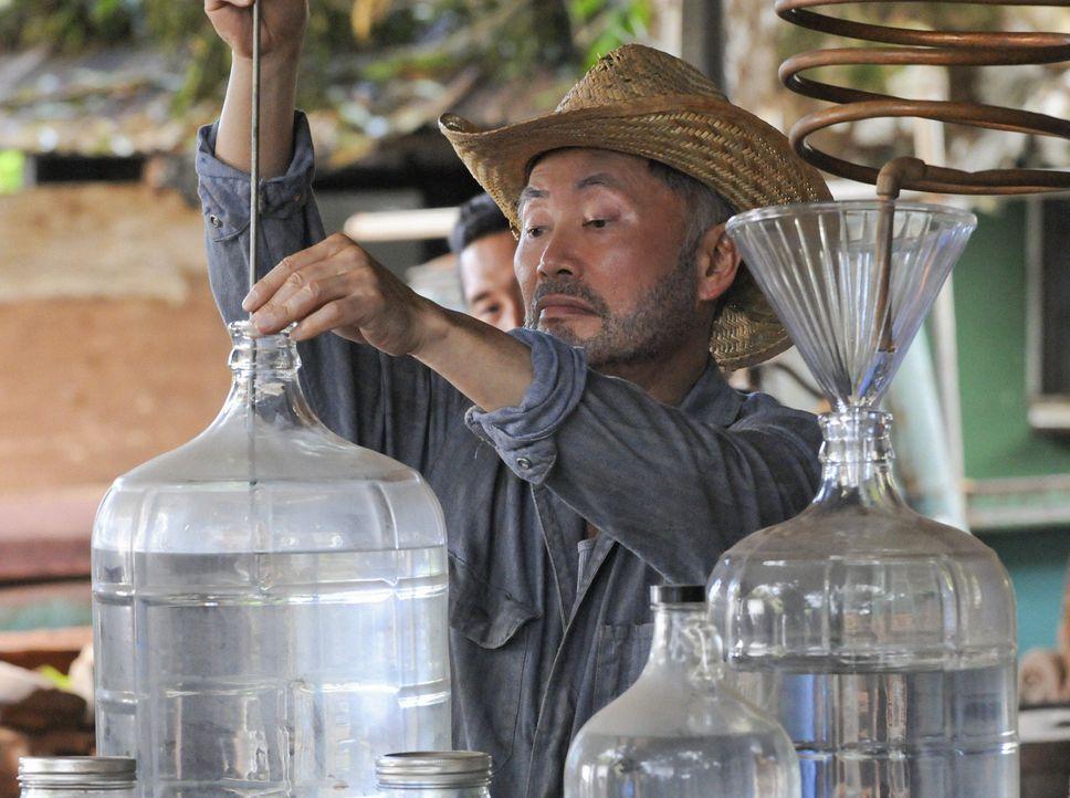 Kann Choi (George Takei) seinem Neffen Chin bei einem neuen Fall behilflich sein? - Bildquelle: 2012 CBS Broadcasting, Inc. All Rights Reserved.