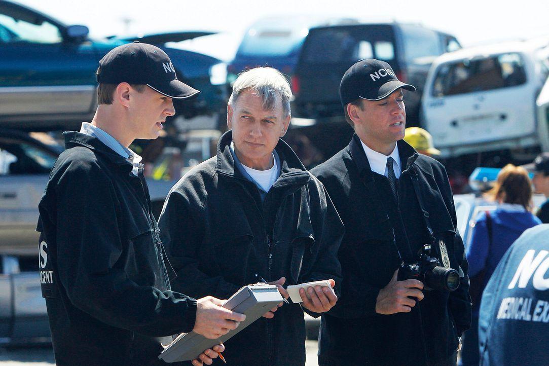 Gibbs (Mark Harmon, M.), DiNozzo (Michael Weatherly, r.) und McGee (Sean Murray, l.) bearbeiten den Fall eines Serienkillers, der reihenweise Biker... - Bildquelle: CBS Television