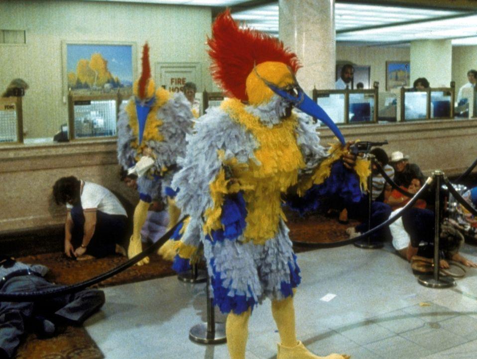 Bankräuber haben die Vogelkostüme von Skip und Harry entwendet und verüben damit einen Banküberfall. Sie bringen die beiden damit in eine üble... - Bildquelle: Columbia Pictures Corporation