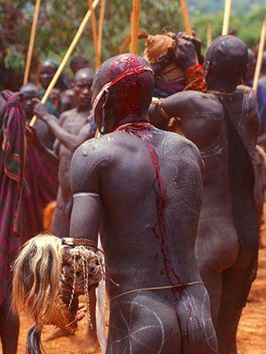 Blutige Kampfspuren von hinten - Bildquelle: Richard Gress