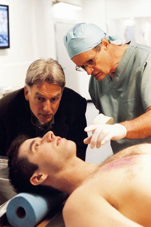 """Die Agenten Gibbs (Mark Harmon, l.) und Dr.""""Ducky"""" Mallard (David McCallum, r.) eilen zur Air Force One, um einen Todesfall zu untersuchen. Die Unte... - Bildquelle: CBS Television"""