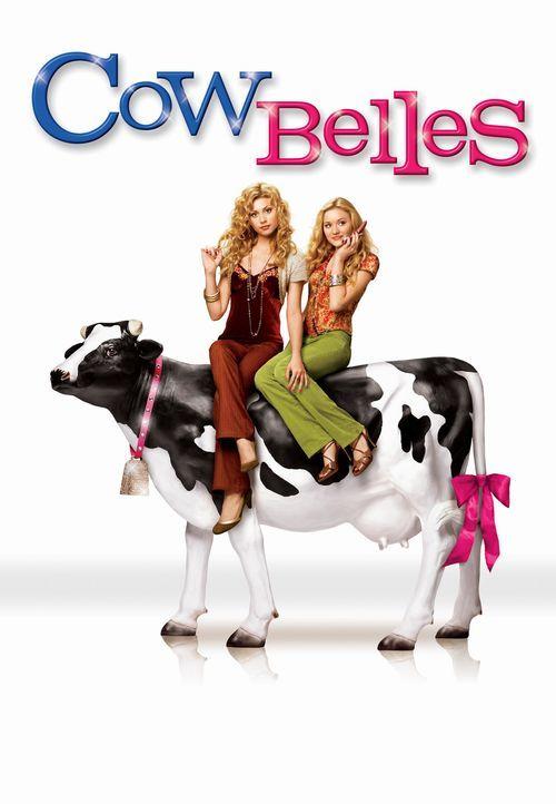 Partygirls auf Mission - Plakatmotiv (mit Alyson, l. und Amanda Michalka, r.) - Bildquelle: Buena Vista International Television