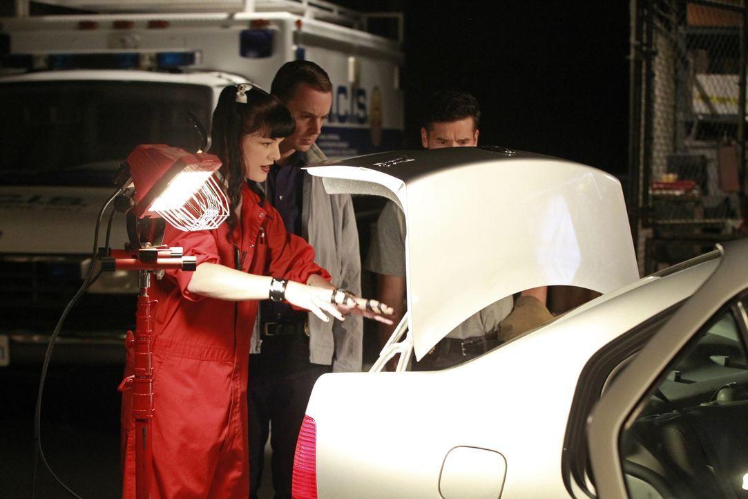 Haben sie eine heiße Spur? DEA Agent Luis Mitchell (John Gabriel, r.), mit McGee (Sean Murray, M.) und Abby (Pauley Perrette, l.) ... - Bildquelle: Monty Brinton CBS Television