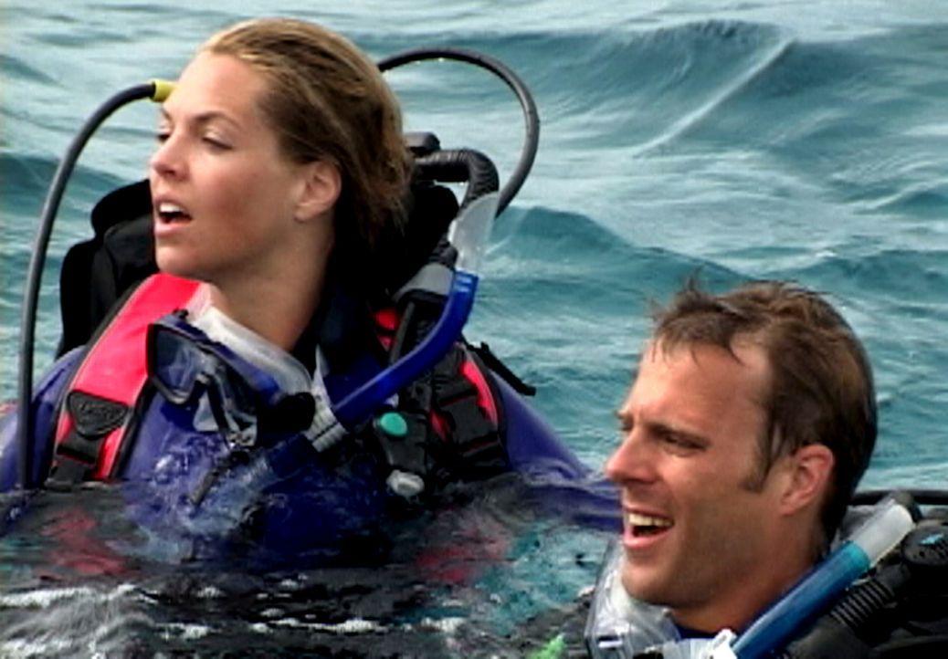 Zunächst haben Susan (Blanchard Ryan, l.) und Daniel (Daniel Travis, r.) viel Spaß an ihrem Tauchausflug, doch dann geschieht das Unfassbare ... - Bildquelle: 2004 Lions Gate Films. All Rights Reserved.
