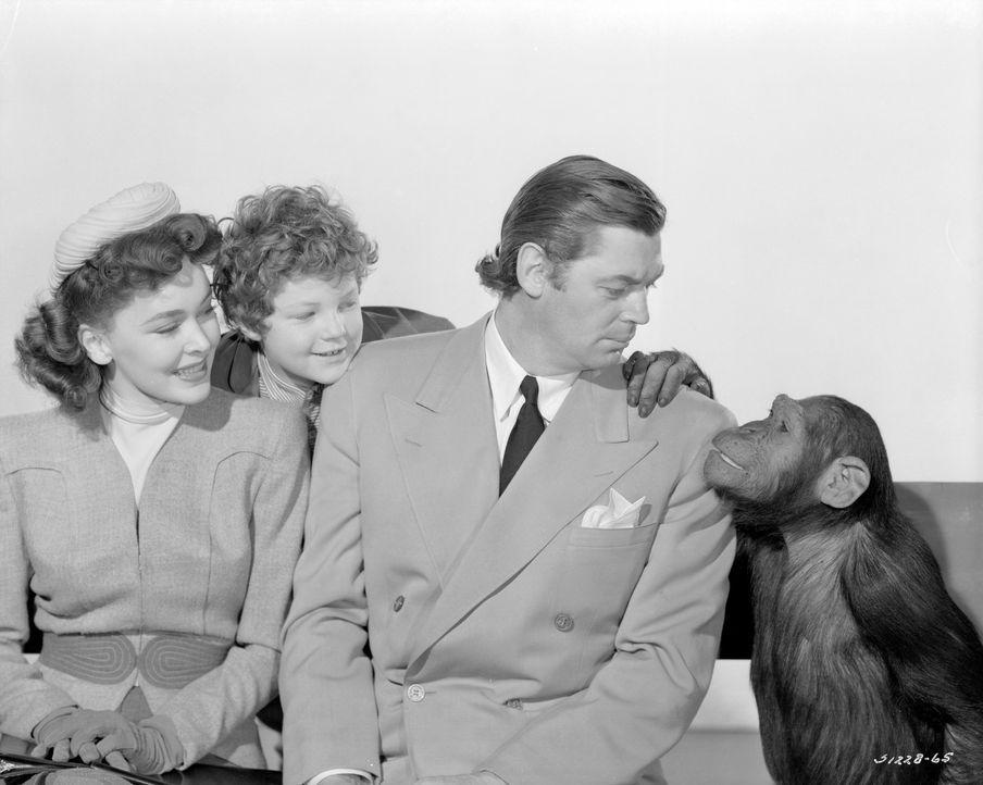 (v.l.n.r.) Jane (Maureen O'Sullivan); Boy (John Sheffield); Tarzan (Johnny Weissmuller) - Bildquelle: 1942 Warner Bros. Entertainment Inc. All Rights Reserved.