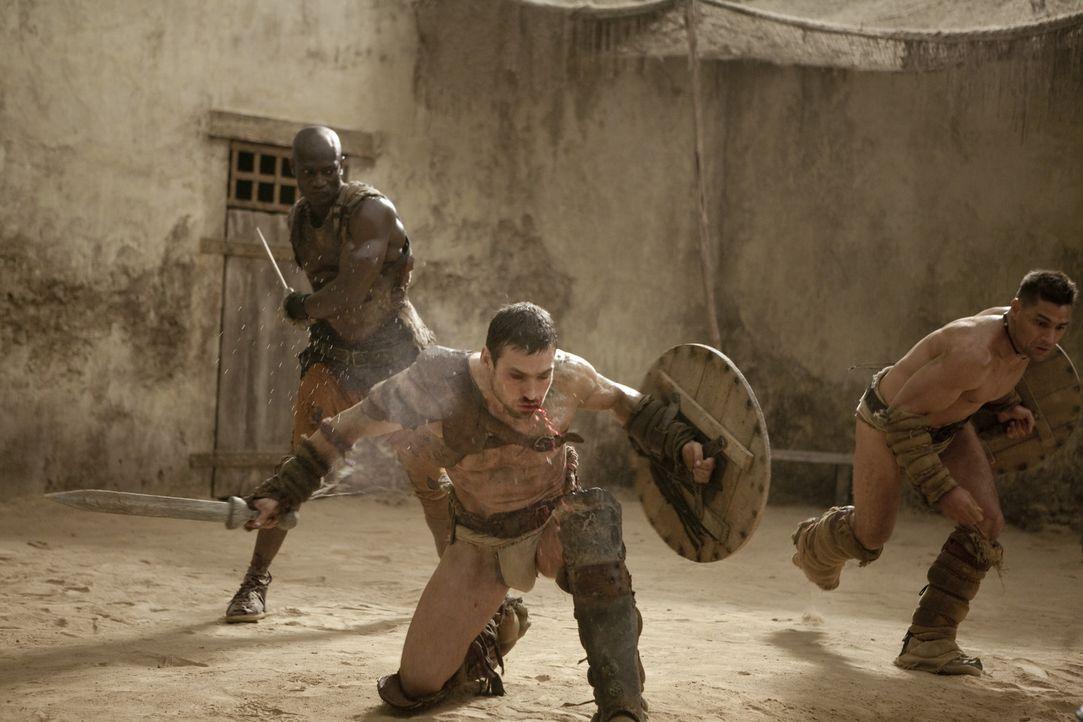 Drago (Peter Mensah, M.) versucht verzweifelt, Spartacus (Andy Whitfield, r.) und Crixus (Manu Bennett, l.) einzuhämmern, dass sie der sichere Tod... - Bildquelle: 2010 Starz Entertainment, LLC