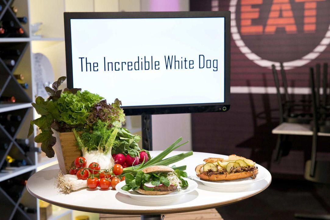 """Sehen die Investoren in dem Konzept """"The Incredible White Dog"""" eine gute Kapitalanlage? - Bildquelle: Richard Hübner kabel eins"""
