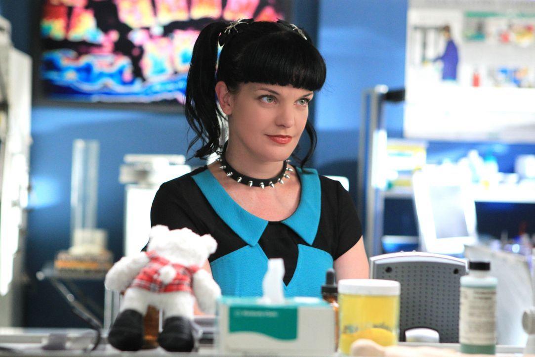 Ein neuer Fall beschäftigt Abby (Pauley Perrette) und ihre Kollegen ... - Bildquelle: CBS Television