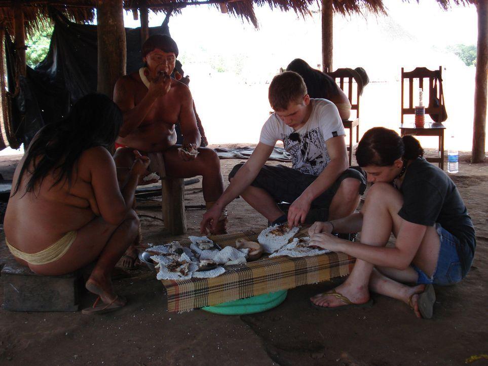 In Brasilien sollen Selina (r.) und Florian (2.v.r.) endlich lernen, was es bedeutet, für den eigenen Lebensunterhalt zu arbeiten und dass es sich... - Bildquelle: kabel eins