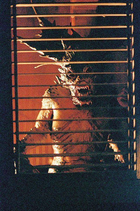 Unter dem Einfluss der Mermaid finden eigenartige Verwandlungen statt ... - Bildquelle: 2004 Sony Pictures Television International. All Rights Reserved.
