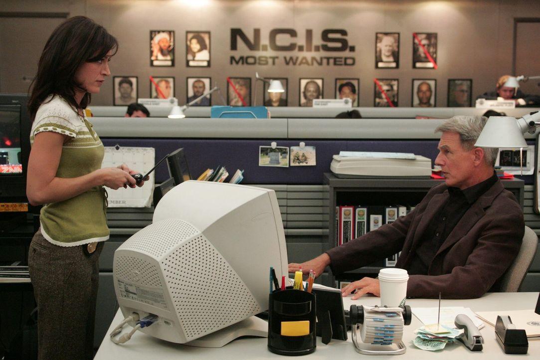 Gibbs (Mark Harmon, r.) und Kate (Sasha Alexander, l.) machen sich auf die Suche nach dem Täter, doch ihre Ermittlungen führen zu einem unglaubliche... - Bildquelle: CBS Television
