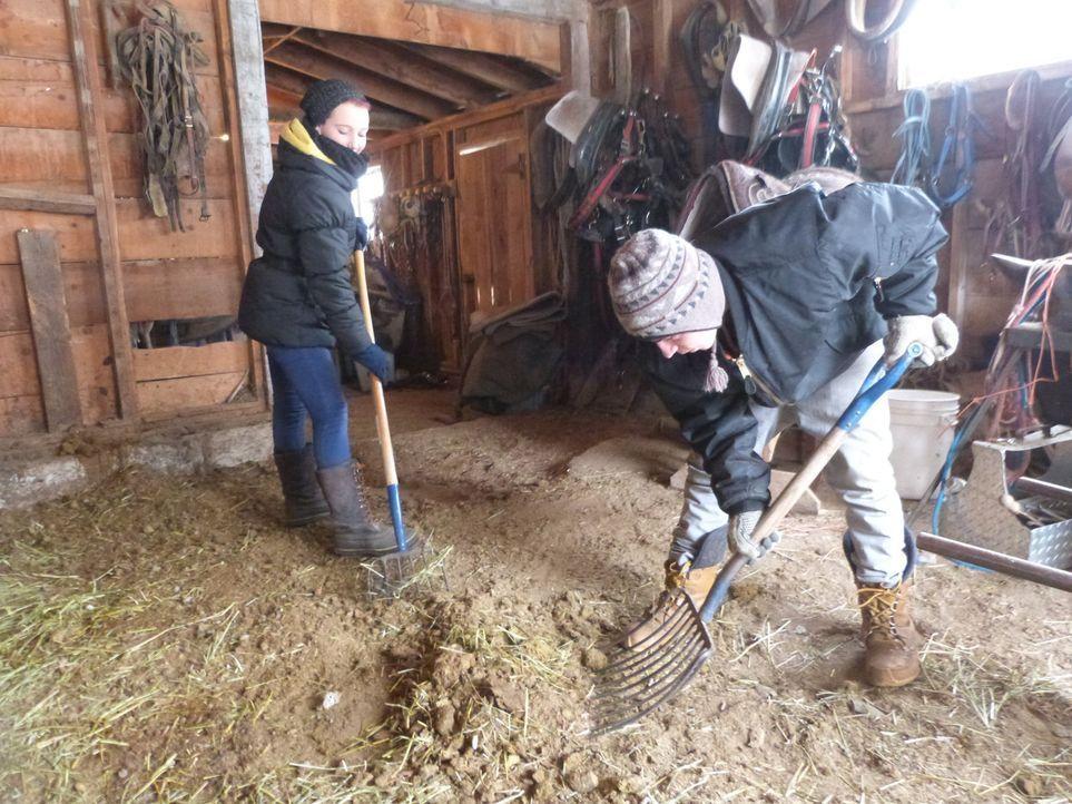 Im wilden Westen müssen Chantal (l.) und Denis (r.) bei eisigen Temperaturen ihre Kraft unter Beweis stellen ... - Bildquelle: SAT.1