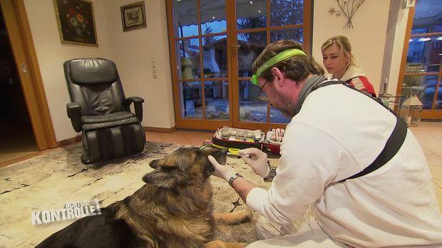 Achtung Kontrolle - Achtung Kontrolle! - Thema U.a.: Verdacht Auf Einen Schlaganfall - Tierrettung München