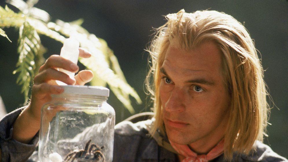 Arachnophobia - Bildquelle: Hollywood Picturest