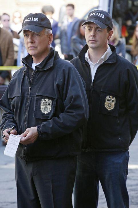 Die Ermordung einer kolumbianischen Prostituierten und eines Petty Officers der Navy führt zu DNA-Spuren, die im Zusammenhang mit einem Bombenanschl... - Bildquelle: Darren Michaels CBS Television