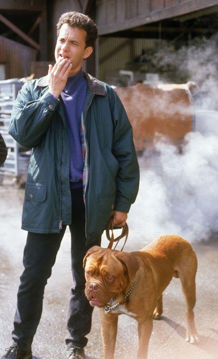 Zusammen mit Huutsch (r.), dem Hund des Opfers, versucht Polizist Scott (Tom Hanks, l.), den Mordfall des Schrottplatzwächters zu lösen ... - Bildquelle: Touchstone Pictures