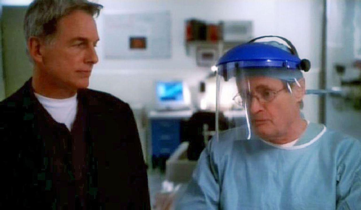 Gibbs (Mark Harmon, l.) und Ducky (David McCallum, r.) klären die Todesursache des ermordeten Marines ... - Bildquelle: CBS Television