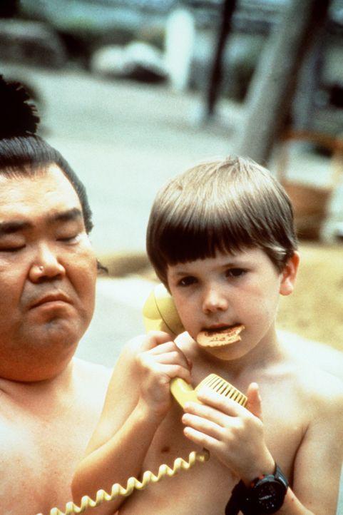 Der kleine Tum Tum (Evan Bonifant, r.) fühlt sich unter den Sumu-Ringern wohl, aber er muss noch viel essen, um einer von ihnen werden zu können ... - Bildquelle: Columbia TriStar