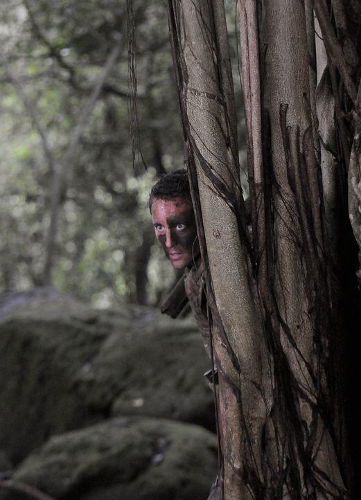 Steve (Alex O'Loughlin) und sein Team versuchen, die Kronzeugin Julie zu finden und zum Gericht zu eskortieren. Julie ist in den Dschungel geflüchte... - Bildquelle: TM &   2010 CBS Studios Inc. All Rights Reserved.