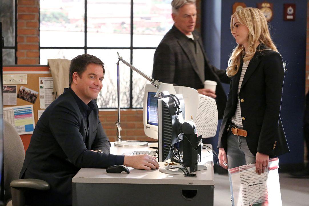 Stoßen auf ein schmutziges Geschäft mit defekten Schutzwesten: DiNozzo (Michael Weatherly, l.), Gibbs (Mark Harmon) und Bishop (Emily Wickersham, r.... - Bildquelle: CBS Television