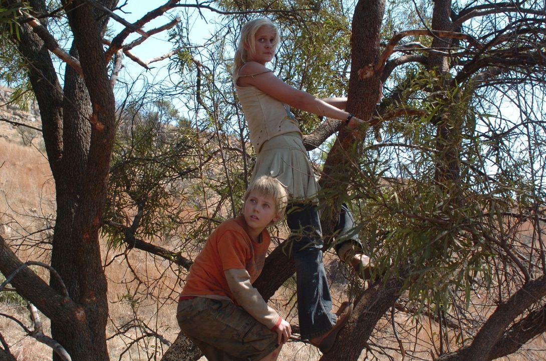 Auf der Flucht vor einem bissigen Löwenrudel: Jessica (Carly Schroeder, r.) und David (Connor Dowds, l.) ...