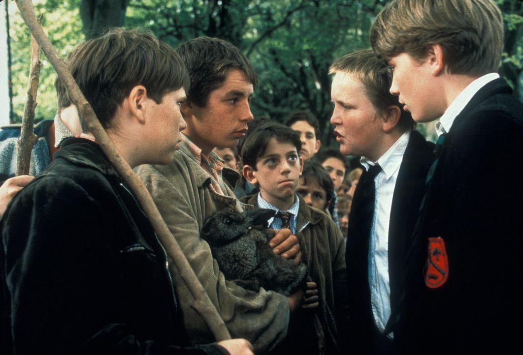"""Seit Generationen liegen die Kinder zweier irischer Dörfer im """"Krieg"""". Ihre Anführer, Fergus (Gregg Fitzgerald, 2.v.l.) auf der einen Seite, Geronim... - Bildquelle: 2000 Warner Bros. International Television Distribution"""