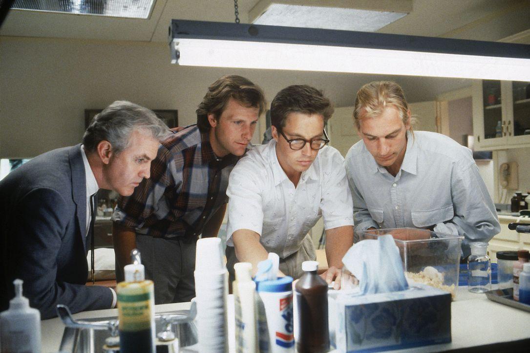 Kämpfen gegen eine neue höchst aggressive und giftige Spinnenart: Milton Briggs (James Handy, l.), Dr. Ross Jennings (Jeff Daniels, 2.v.l.), Chris C... - Bildquelle: Hollywood Picturest