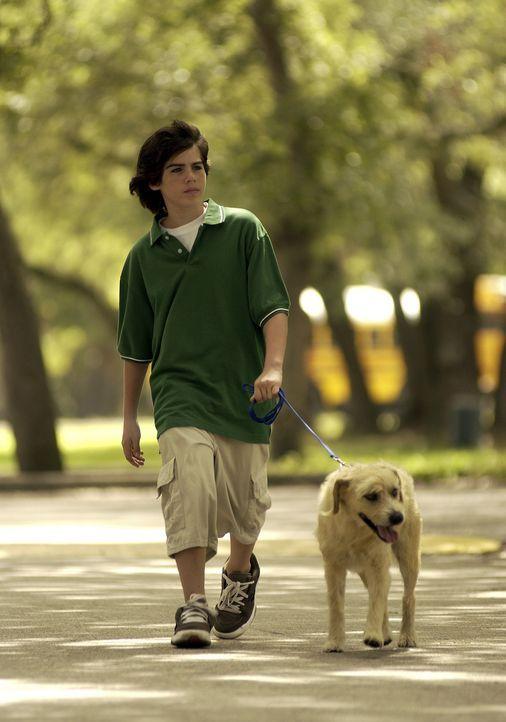 Seit Wochen ist Zach Dylan (Sammy Kahn) in seine Mitschülerin Becky verliebt. Doch das Mädchen weist ihn immer wieder ab. Da läuft ihm ein sprech... - Bildquelle: North by Northwest Entertainment