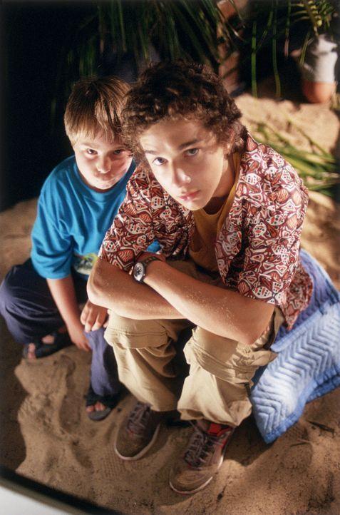 """Schon bald versinken Louis (Shia LaBeouf, r.) und """"Beans"""" (Steven Anthony Lawrence, l.) im totalen Chaos. Das herrliche Ferienhaus stürzt ein und a... - Bildquelle: The Disney Channel"""